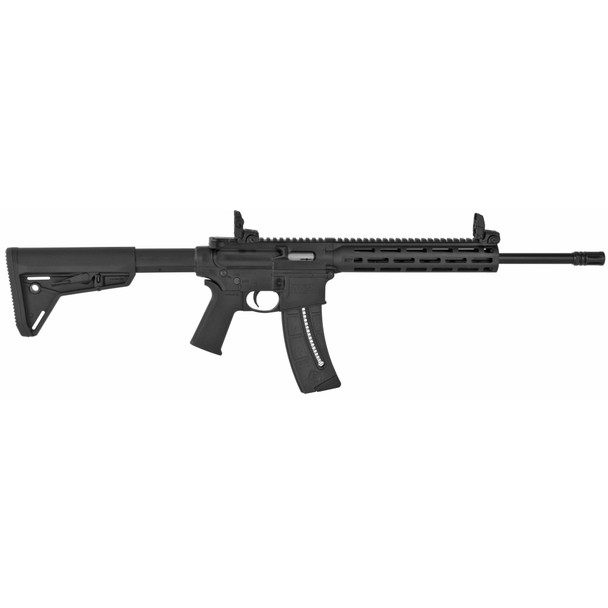 Smith Wesson M&P15-22 Magpul