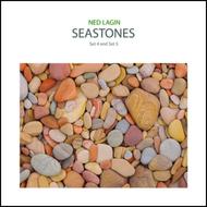 Ned Lagin - Seastones Sets 4 and 5