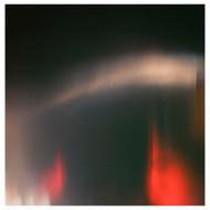 Swartz - Light Leaks