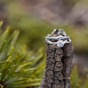 Earthy diamond engagement ring by Olivia Ewing Jewelry