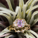 Nature themed wedding band by Olivia Ewing Jewelry