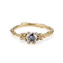 Naples Salt and Pepper Diamond Three Stone Ring by Olivia Ewing Jewelry