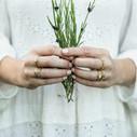 Pave diamond twig wedding band by Olivia Ewing Jewelry