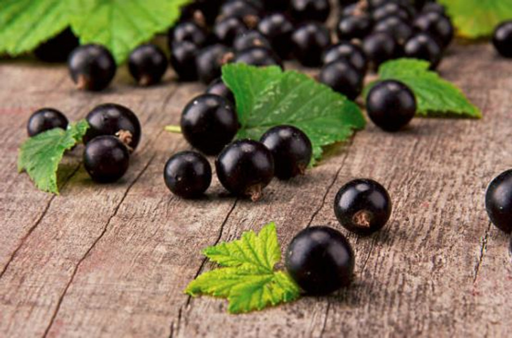 Blackcurrant cordial, blackcurrant chews and blackcurrant berries.