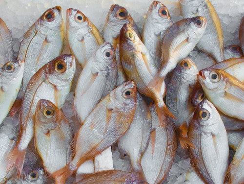 A lightly fishy aroma, reminicent of cuisine before its prepared. If you are looking for a stronger scent, see Fish Market.