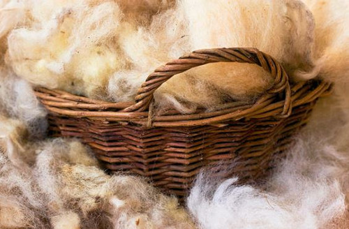 Wool - Aroma Oil