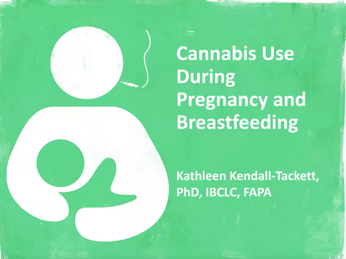 Recorded Webinar: Cannabis Use During Pregnancy and Breastfeeding by Kathleen Kendall-Tackett, PhD, IBCLC, FAPA