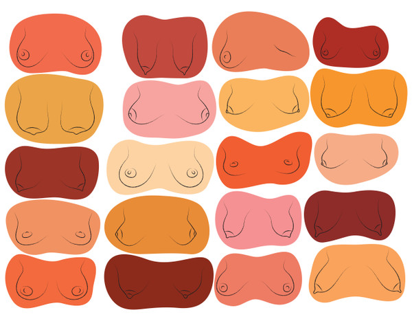 Breast shape chart illustration bundle
