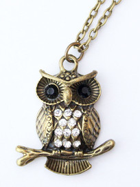 Jewellery - Necklace