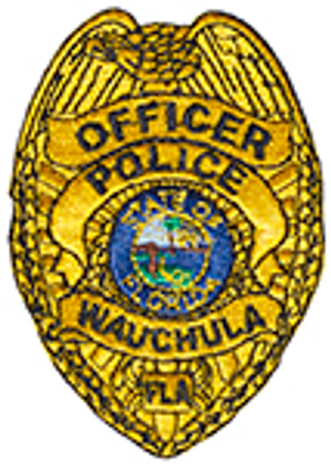 WAUCHA BADGE PATCH, GOLD