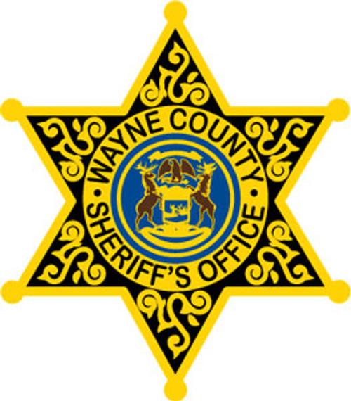 Wayne County Sheriff's Star Patch