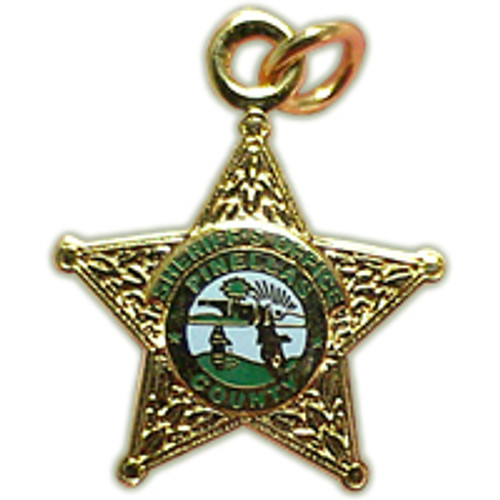 Pinellas County Sheriff's Office Gold Star Charm