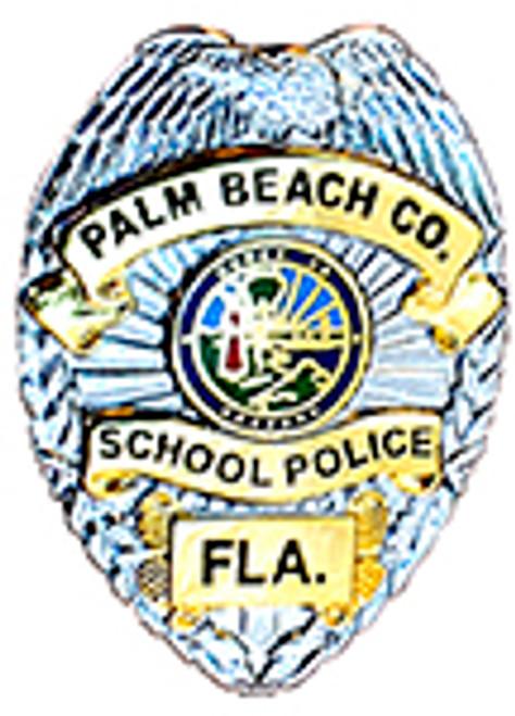 PALM BEACH SCHOOL POLICE BADGE LAPEL PIN