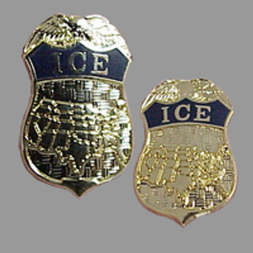 U.S. Department of Homeland Security ICE Community Pin