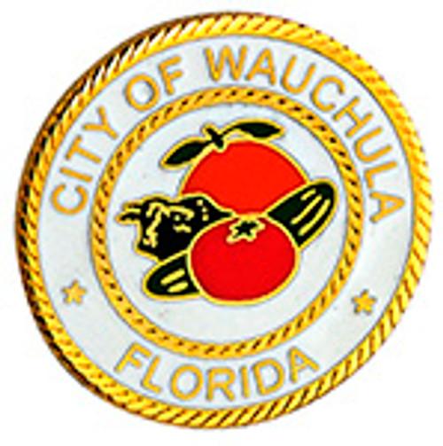 CITY OF WAUCHULA FLORIDA POLICE LAPEL PIN