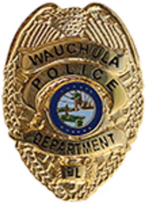 WACHULA FLORIDA POLICE DEPARTMENT BADGE LAPEL PIN