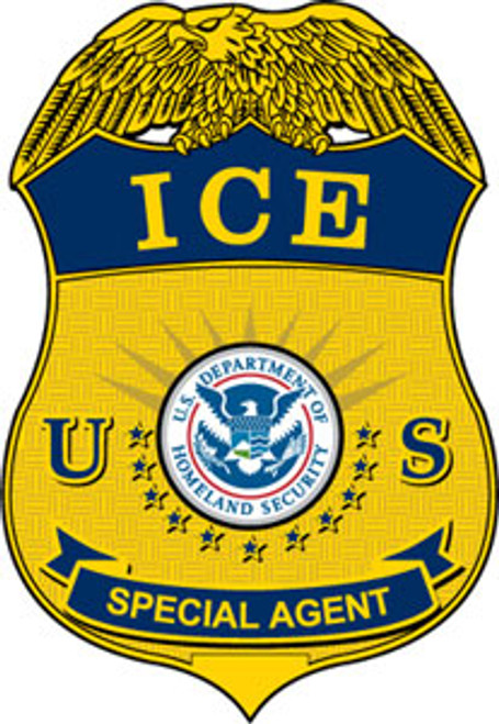 DHS ICE Special Agent Badge Plaque