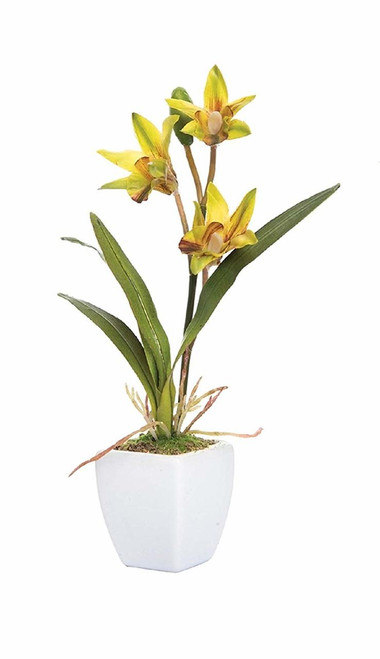 C&F Mini Yellow Orchid in Pot (PCK74209-YELLOW)