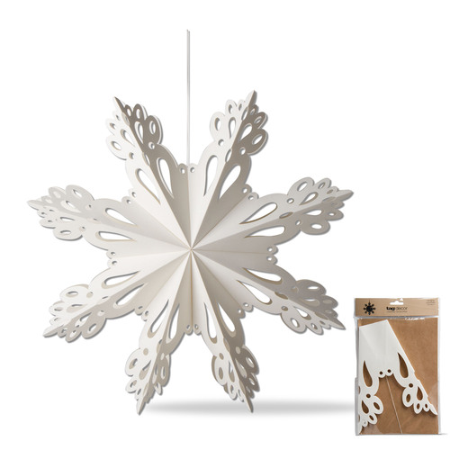 TAG 9 Inch Snowflake Paper Hanging Decor