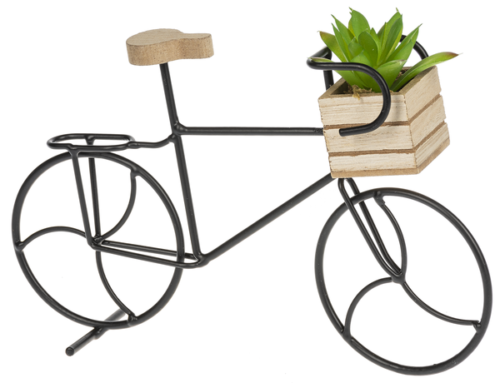 Ganz Bicycle Figure with Succulent