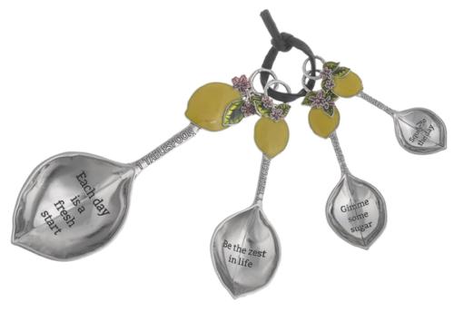 Ganz 4pc Measuring Spoons, Lemons