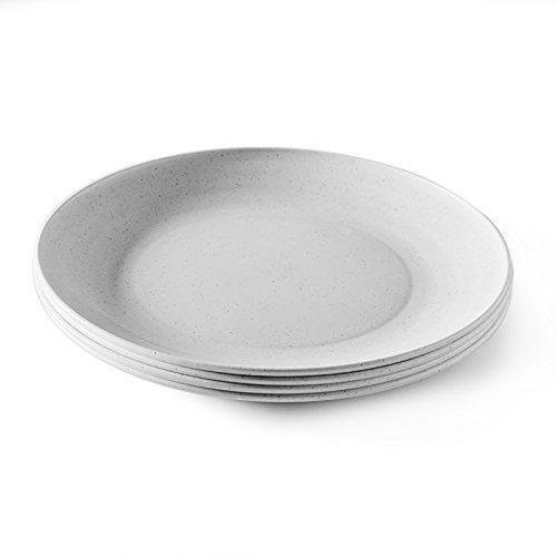 Nordic Ware Microwave Picnic Plates, Set of 4 (60090)