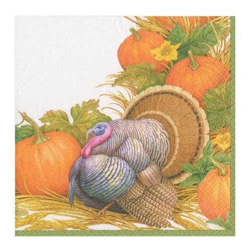 Caspari Paper Beverage Napkins, Thanksgiving Harvest (14910C)