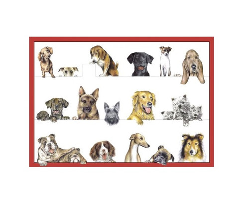 Caspari Boxed Note Cards, Dogs, Box of 8 (84609.46)