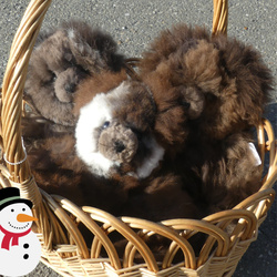 Alpaca Teddy Bears