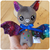 Micro Bat Softie