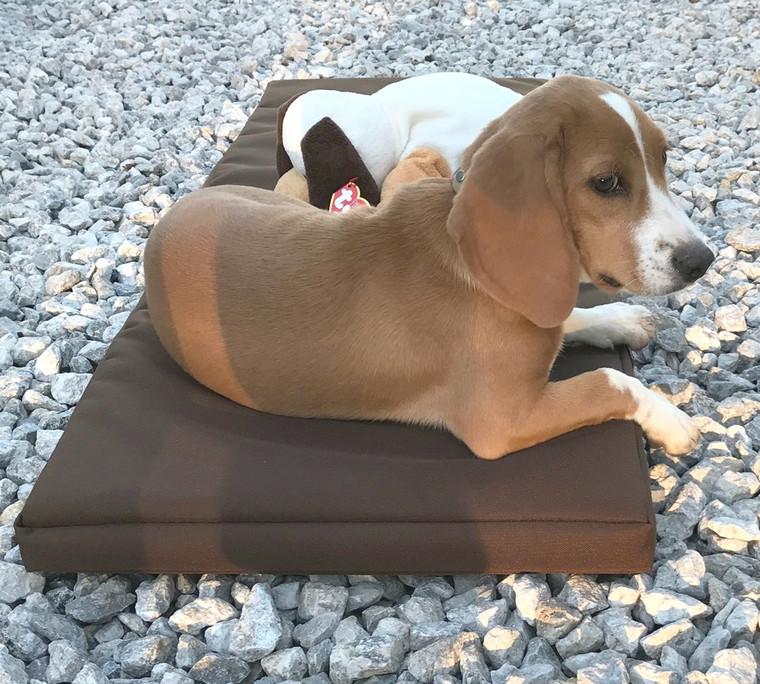 Mule Brand dog box pads are comfy! Premium grade foam and tough cordura material make for a chill ride