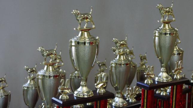 trophies-club-4.jpg