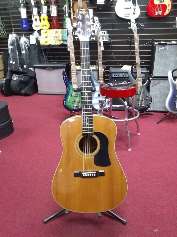 USED Washburn Acoustic