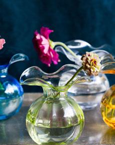 hibiscus230.jpg
