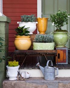 rustic-garden-but.jpg