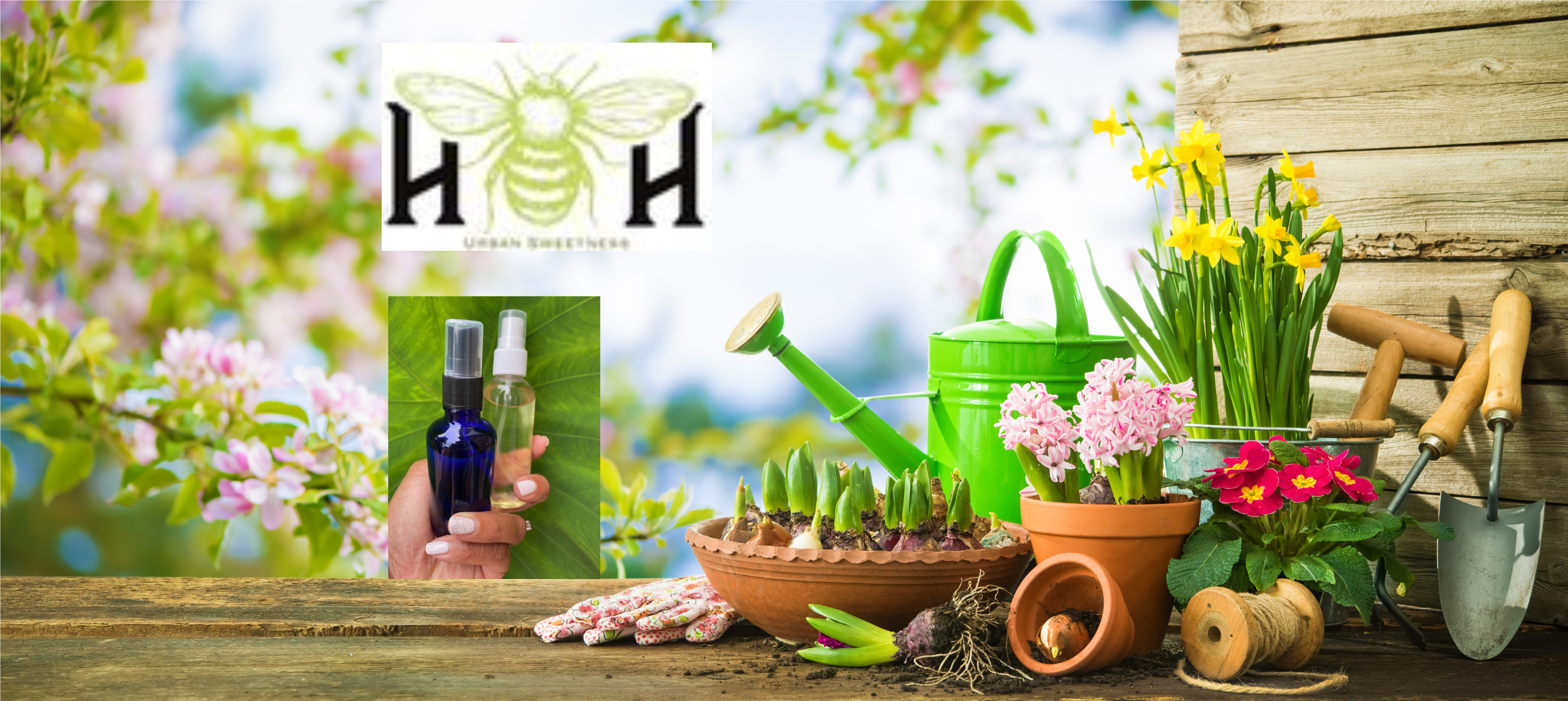 hh901-garden.jpg