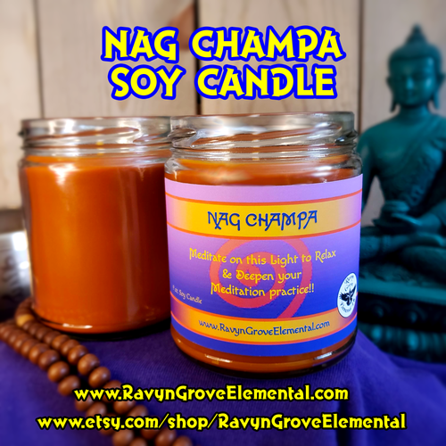 With our Nag Champa Jar Soy Candle, Sanctify and Cleanse a space and help achieve a state of Calm, Clarity, and Focus.  Deepen your Meditation Practice; handcrafted by Ravyn Grove Elemental.