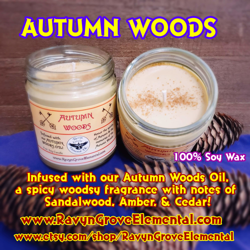 AUTUMN WOODS - 9oz JAR CANDLE - crafted by Ravyn Grove Elemental - Spiritually charged to honor the spirits of Autumn and the memories of the Autumn Woods! Infused with our Autumn Woods Oil - a spicy woodsy fragrance with notes of sandalwood, amber, and cedar!