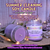 Light our LAVENDER & SAGE SUMMER CLEANING Candle to Clear your Aura & Space of Negative Energies to usher in the Blessings!