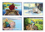 4 pack of Greeting Cards, Horizontal Orientation