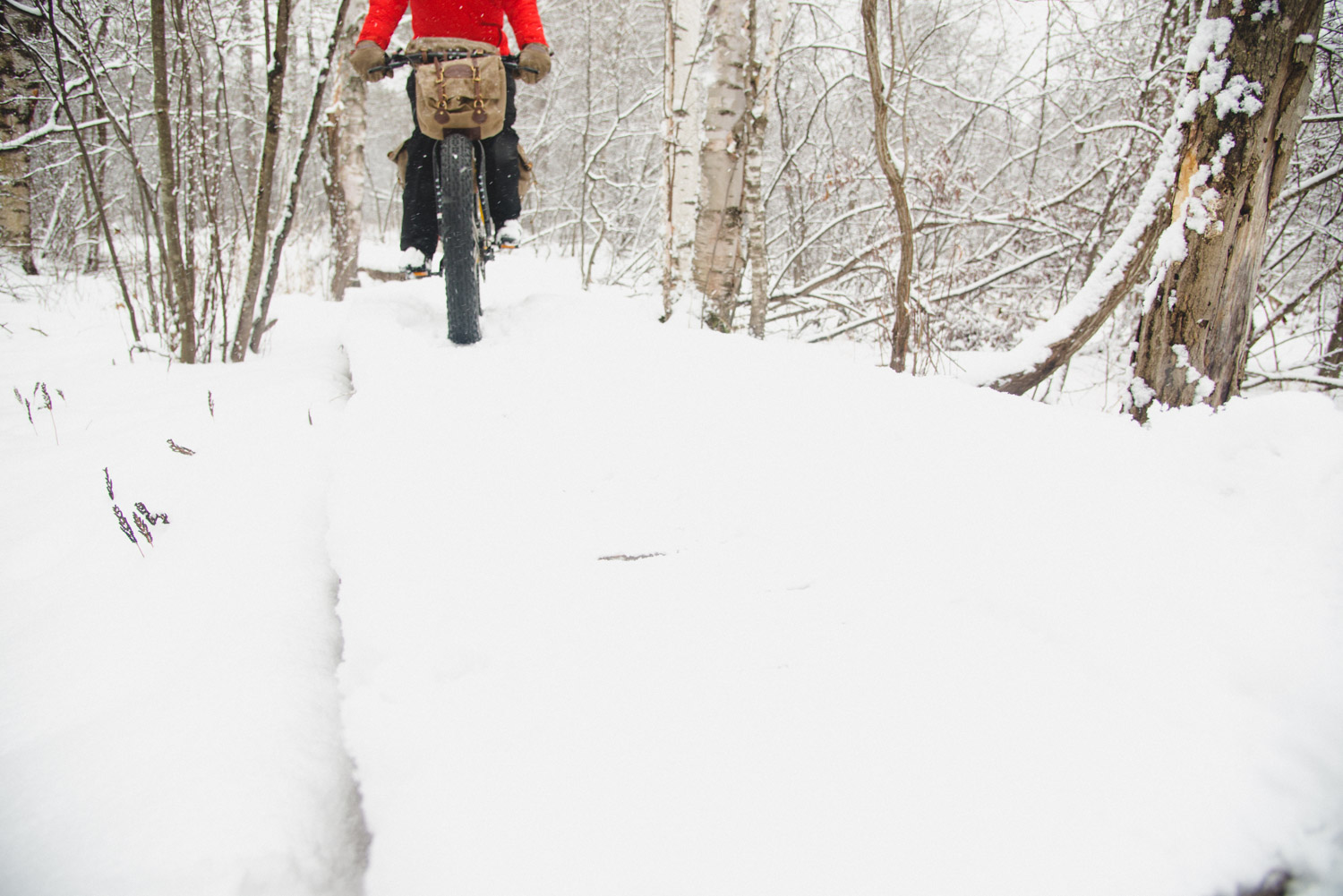 Five Spots to Fat Bike up North