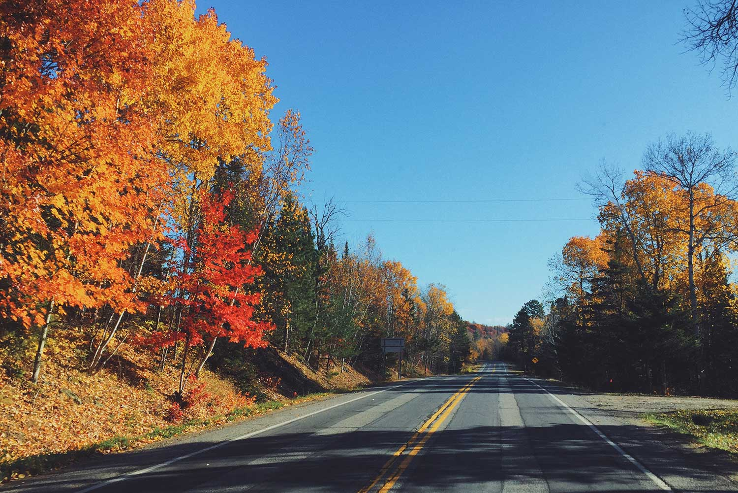 Best Spots for Fall Colors in MN Northland