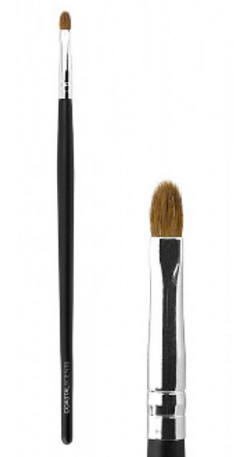 Detail Pointed Brush