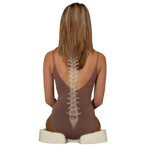 Kabooti Donut Coccyx Relief Cushion