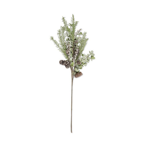 Floral Eucalyptus and Pine Stem