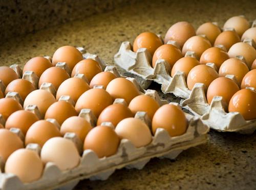 Case of 15 dozen eggs