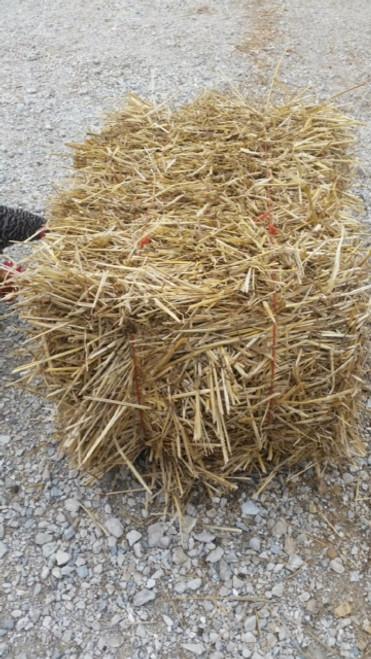 1 Bale Straw
