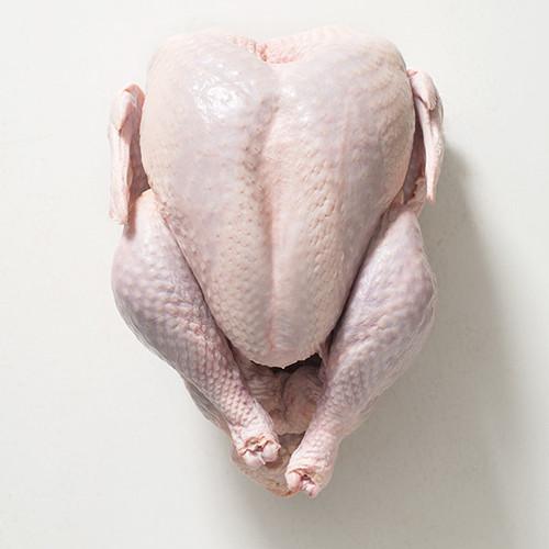 17 lb. whole turkey