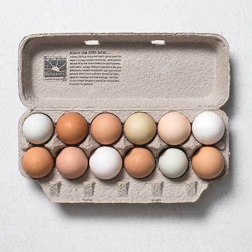 Farm fresh eggs from pasture raised hens