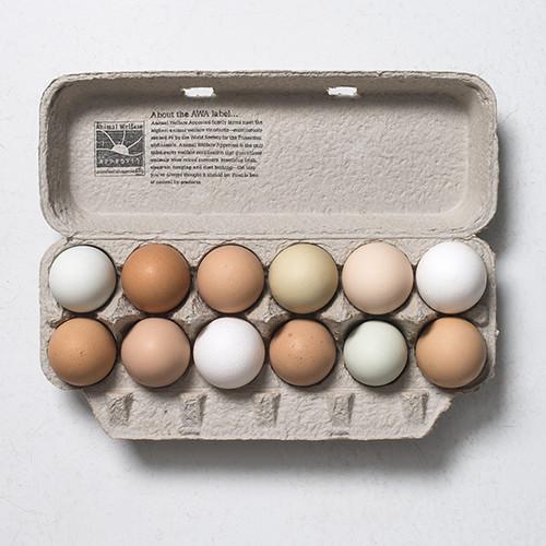 Farm Fresh Eggs, laid by pasture raised hens